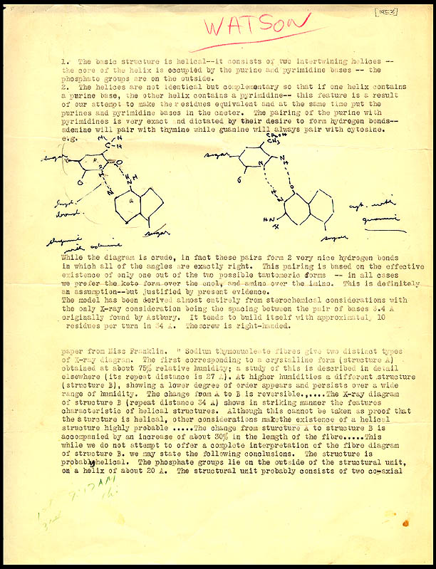 rosalind franklin research paper The rosalind franklin papers rosalind elsie franklin and was awarded a scholarship for a further year of research.