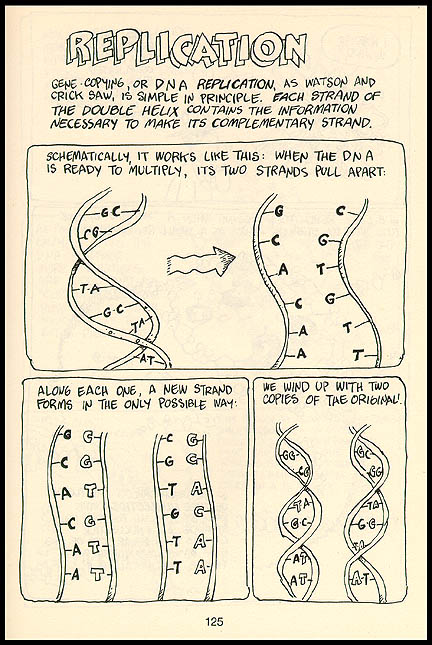 The cartoon guide to physics | larry gonick.