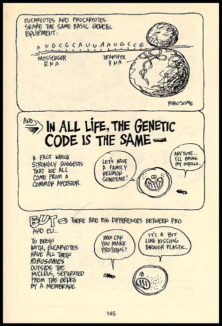 The cartoon guide to statistics | larry gonick.