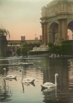 The Palace of Fine Arts and the surrounding lagoon with swans, 1915