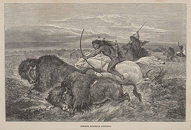 Indians Hunting Buffalo, Richard Irving Dodge