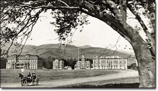 Campus View from Dana Street with Horse and Carriage, 1897